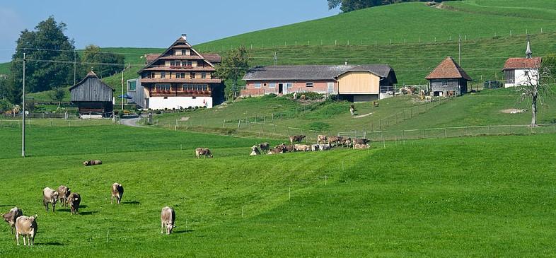Ein Haus mit einem Bauernhaus ist der neue Trend zum Luxus